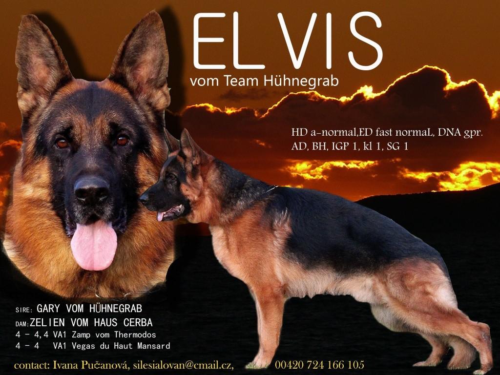 ELWIS 1